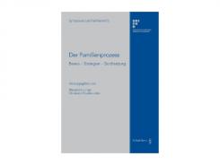 Der Familienprozess